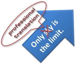 only-professional-translation-is-limit